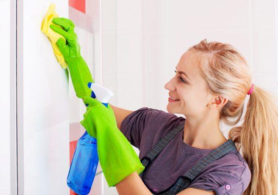 Serviço de Limpezas Domésticas
